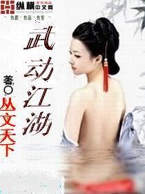 小说:武动江湖,作者:丛文天下